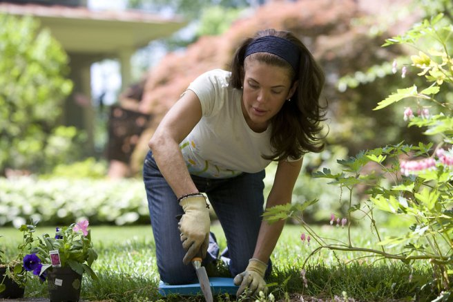 Azalea article woman gardening